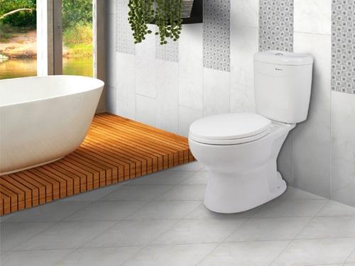 gạch lát nền nhà vệ sinh 30x30 2